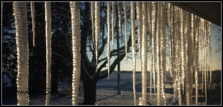 Icicles-on-house